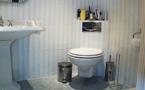 Klassieke badkamer 1