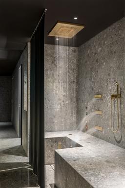 Dornbracht Comfort Shower